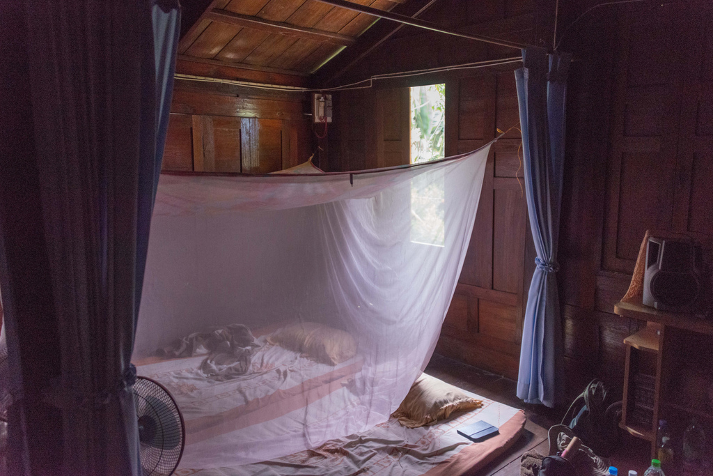 The sleeping room was comprised of foam mats on the floor, privacy curtains, and mosquito netting.