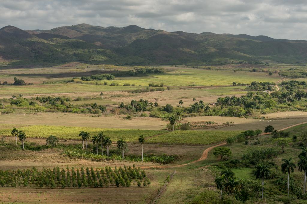 A view of the sugar-growing farms near Trinidad.